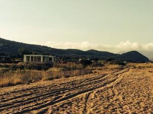 Η παρουσία τροχοφόρων σε διάφορα τμήματα της παραλίας ωοτοκίας συνεχίζει να αποτελεί πρόβλημα όπως και η παρουσία ημιτελών ή ολοκληρωμένων κτιρίων.
