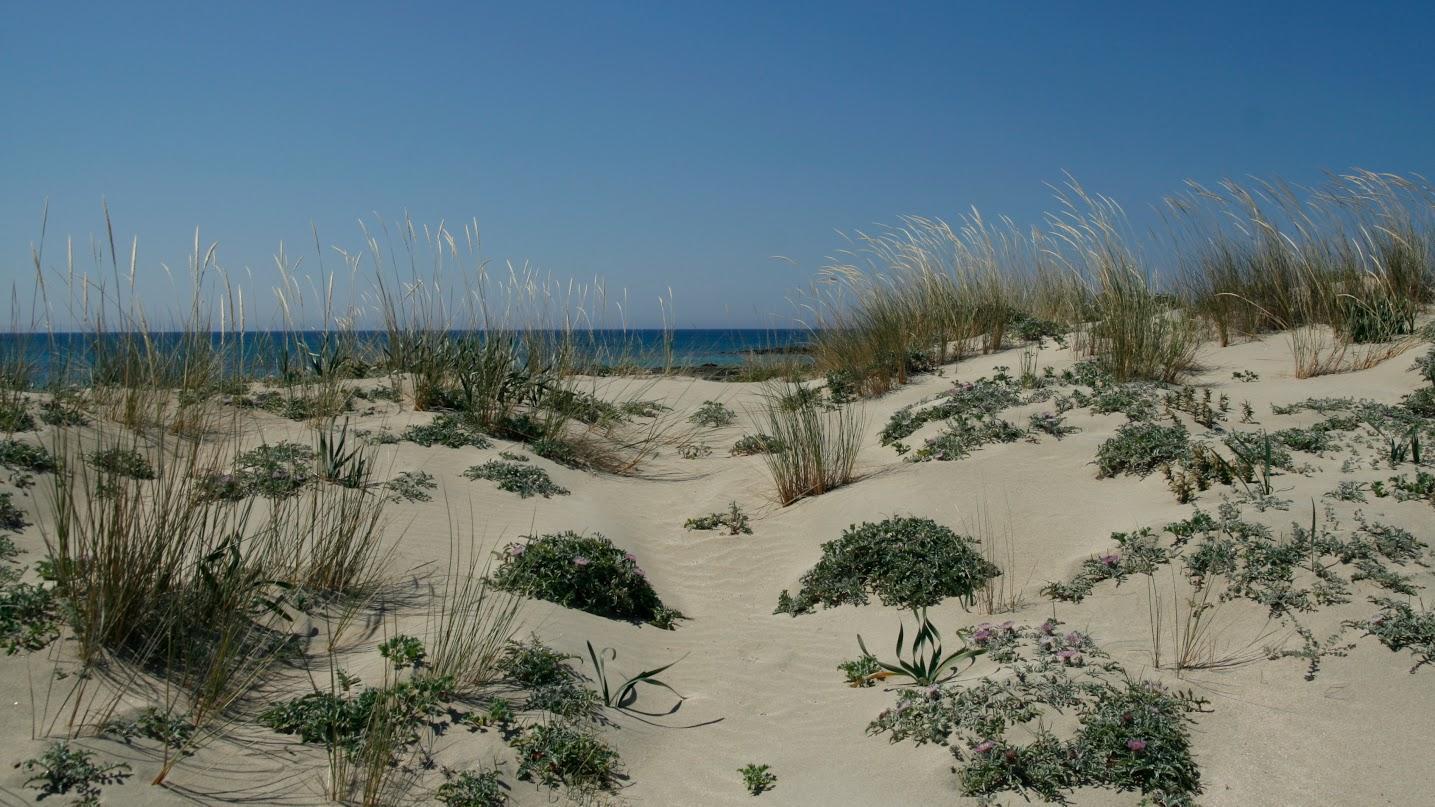 Όπως ήταν οι αμμοθίνες στην Κυπαρισσία. (Photo: Ηλέκτρα Ραμούνδου)