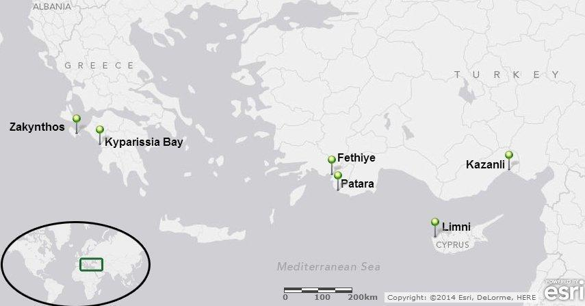 Map of 2013 monitoring & assessment of sea turtle nesting beaches
