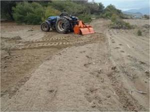 Sand dune ploughing in Kyparissia