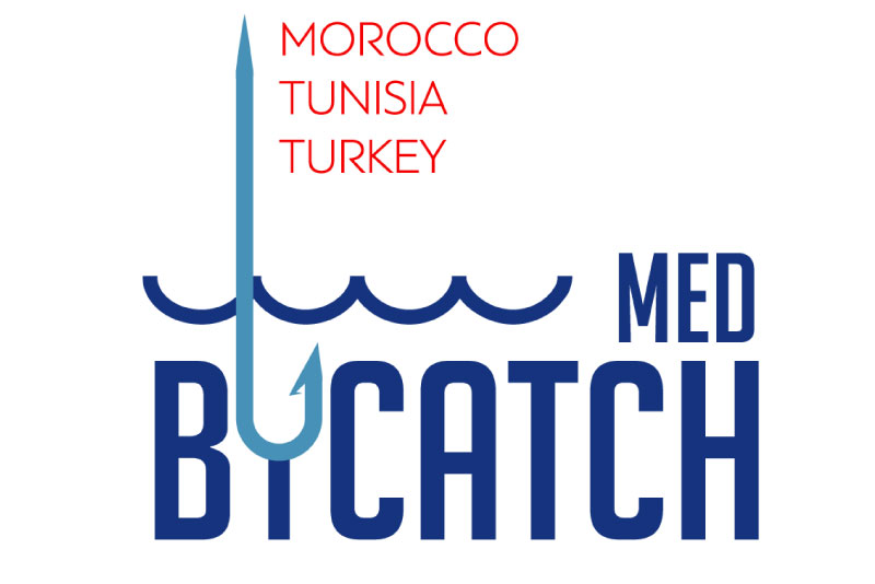 Medbycatch project