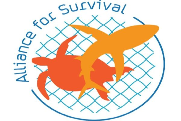 Fishers, Sea turtles and Sharks: Alliance for Survival
