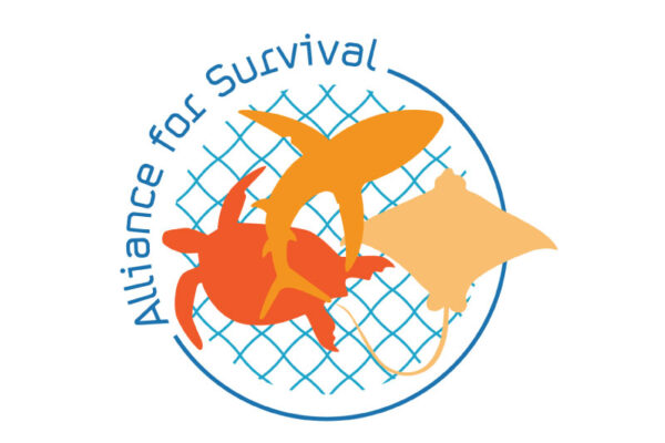 Alliance for Survival II