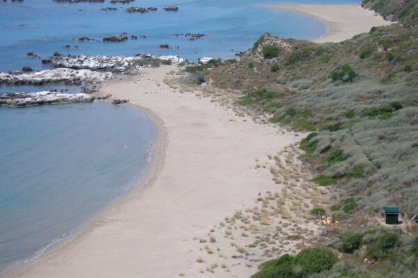 T-PVS/Files (2021)19. Update Report. Follow-up of Recommendation No. 9 (1987) on the protection of Caretta caretta in Laganas bay, Zakynthos (Greece).
