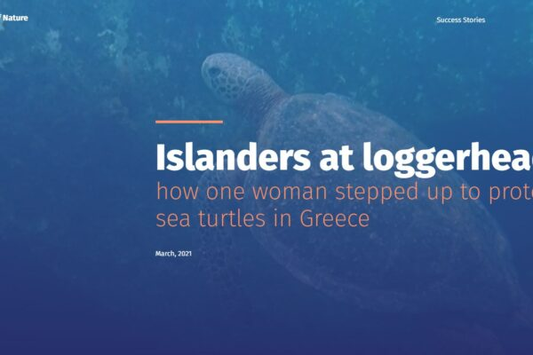 """Bern Convention: """"How one woman stepped up to save sea turtles in Greece"""""""