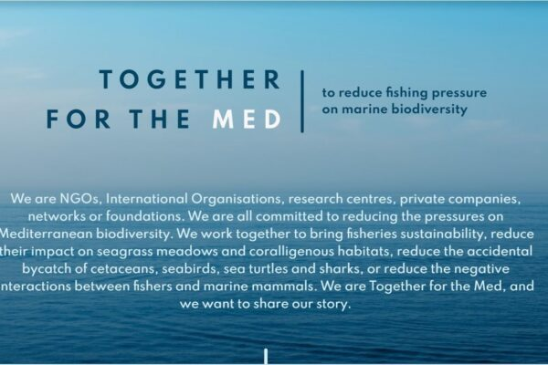 46 organisations work to protect the Mediterranean Sea!