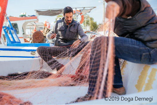 MedBycatch mitigation workshops: Μitigating bycatch in the Mediterranean!