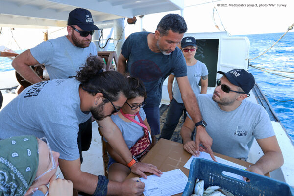 MedBycatch project: Making progress with mitigation trials in Turkey!